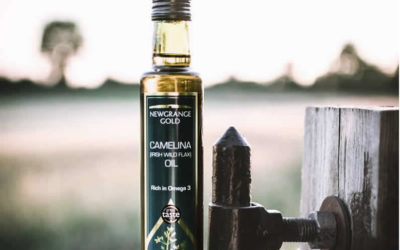 Health Benefits of Camelina Oil
