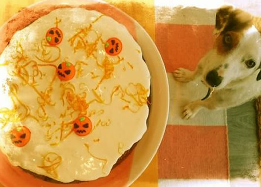 Halloween Cake with Jack Russell looking