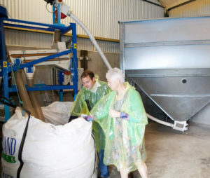 rapeseed pouring into big bags at newgrange gold farm